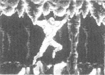 Marche-araignée-Shinobi-III-Return-of-the-Ninja-Master-Sega-Mega-Drive-Notipix